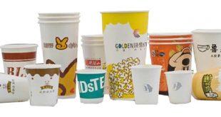 صادرات ظروف کاغذی