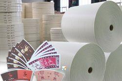 مواد اولیه ظروف کاغذی